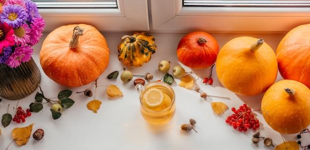 Layout criativo de outono com bolotas de chá de limão e abóboras e bagas de rosa guelder