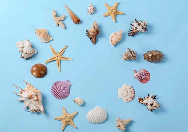 Layout criativo feito de conchas coloridas diferentes e cartão de felicitações. estilo minimalista de fundo