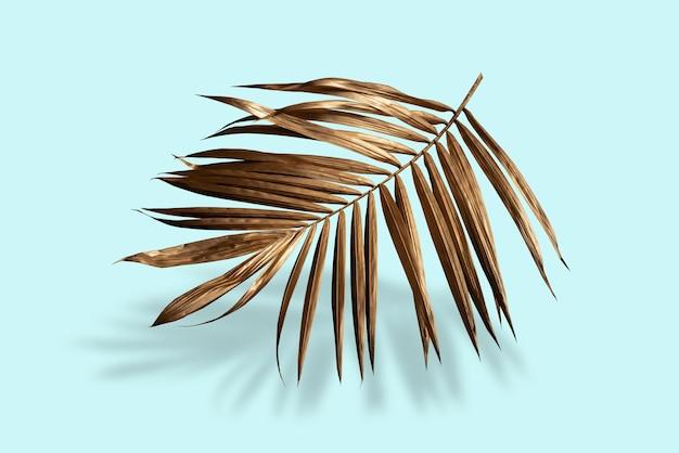 Layout criativo feito de folhas de palmeira dourada tropical colorida sobre fundo azul verão mínimo