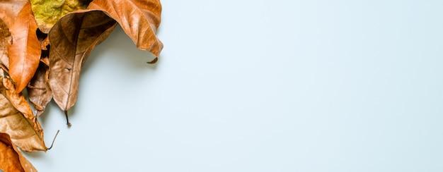 Layout criativo feito de folhas secas sobre fundo azul claro. conceito de outono