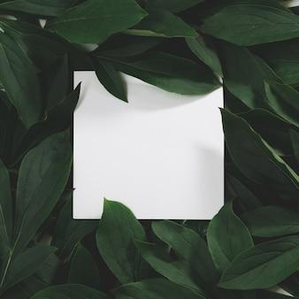 Layout criativo feito de folhas verdes com branco vazio para nota em preto