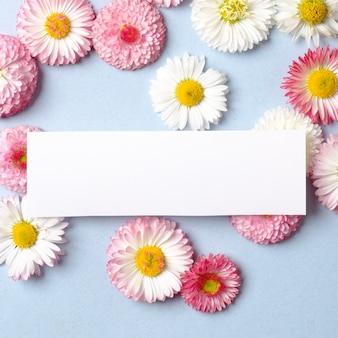 Layout criativo feito de margarida primavera flores e cartão de papel em branco. conceito de férias mínimas. padrão liso leigo. vista superior, sobrecarga