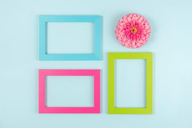 Layout criativo feito de uma flor e molduras coloridas brilhantes. vista superior plana