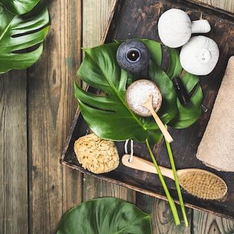 Layout de lay plana com folhas de monstera e produtos para cuidados cosméticos