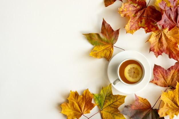 Layout de outono. folhas brilhantes caídas e uma xícara de chá quente com limão em um fundo branco. vista do topo