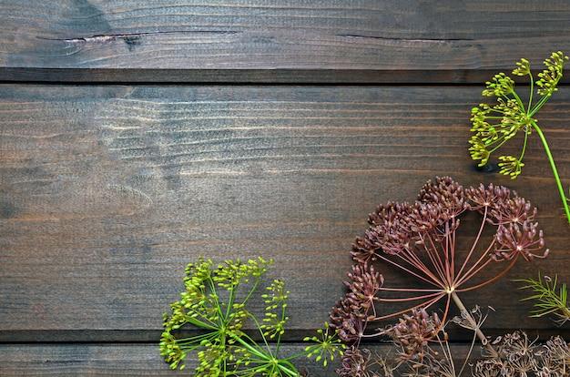 Layout para o fundo, guarda-chuvas de endro com sementes em fundo de madeira. conceito vegetariano preservado fermentado. conceito de alimentação saudável.