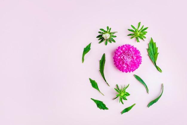 Layout plano leigo com belas flores rosa roxas em fundo pastel. cartão de convite. copie o espaço para o texto.