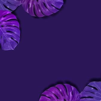 Layout tropical criativo com padrão com folhas de monstro gradiente. tonificação de imagem violeta