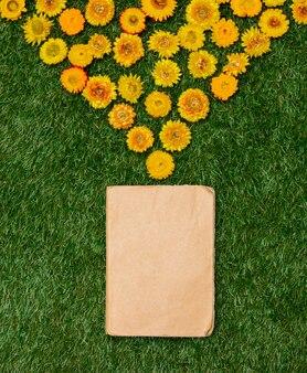 Leão amarelo e um livro sobre a grama verde.