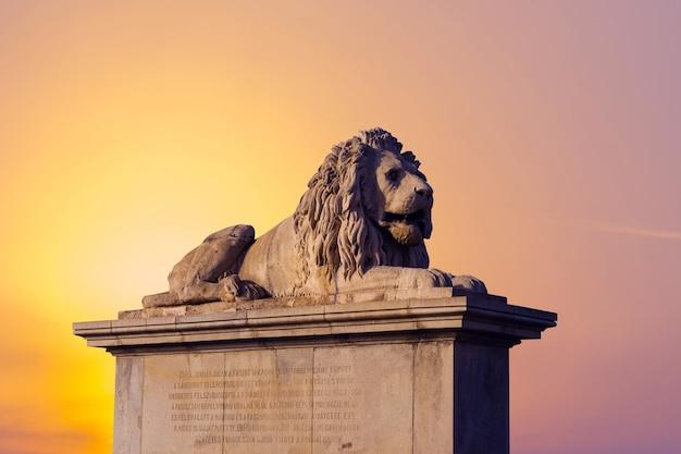 Leão na ponte das correntes no rio danúbio em budapeste, hungria