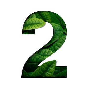 Lefas número 2, feito de folhas vivas reais, com formato de número de corte de papel precioso. fonte de folhas.