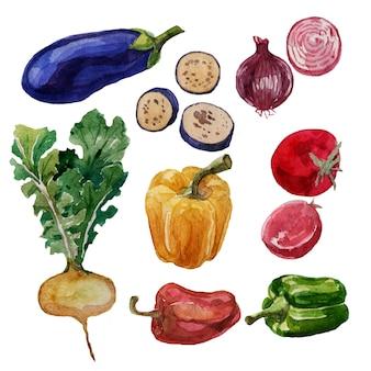 Legumes, berinjela, pimenta, tomate, nabo