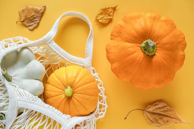 Legumes de colheita fresca cabaças abóbora, pattypan squash em compras saco de malha ecológica, folhas de outono