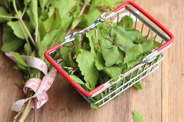 Legumes de manjericão fresco de ervas