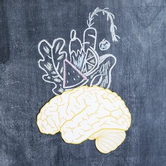 Legumes desenhados sobre o cérebro na lousa