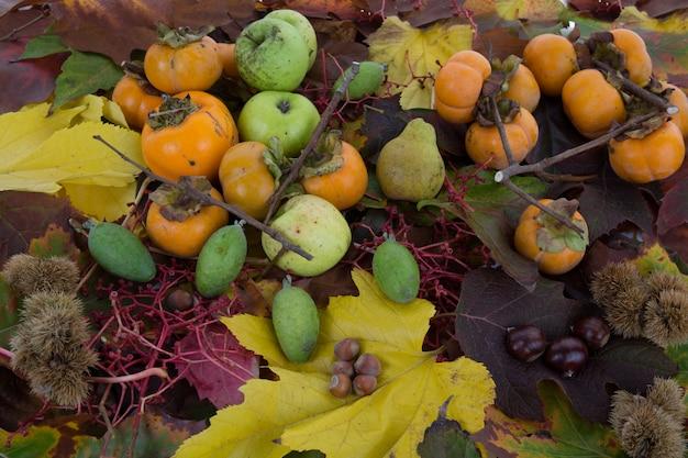 Legumes e frutas de outono sob fundo branco