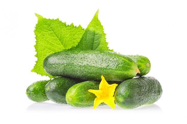 Legumes naturais de pepino verde fresco com folhas e flores isoladas