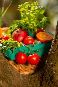 Legumes orgânicos frescos na cesta de vime no jardim em uma árvore