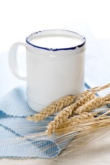 Leite e trigo