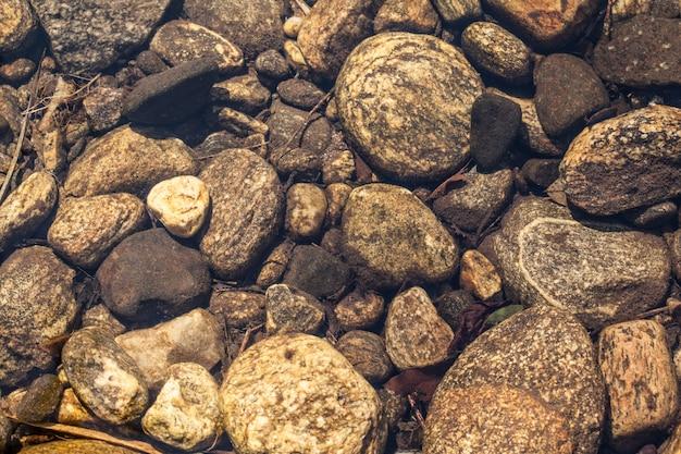 Leito do rio - pedras sob a água clara de um rio