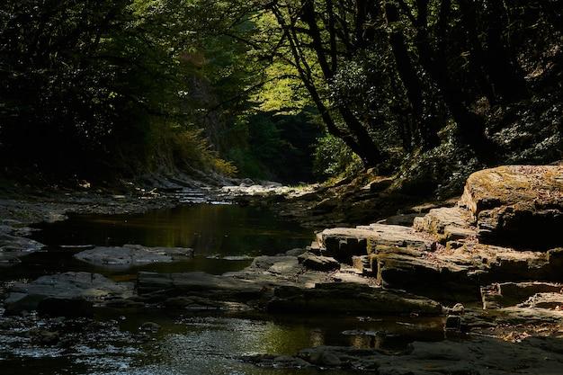 Leito rochoso de um riacho na montanha com cascata de piscinas em um desfiladeiro em uma floresta tropical