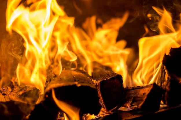 Lenha com fogo