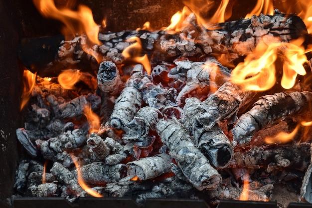 Lenha, fogo quente, tábuas, natureza, floresta selvagem