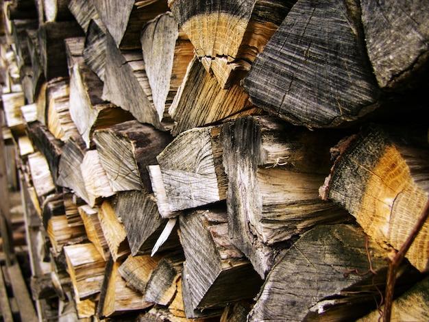 Lenha, pilhas de lenha na floresta.