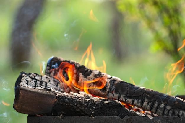 Lenha queimando ao ar livre