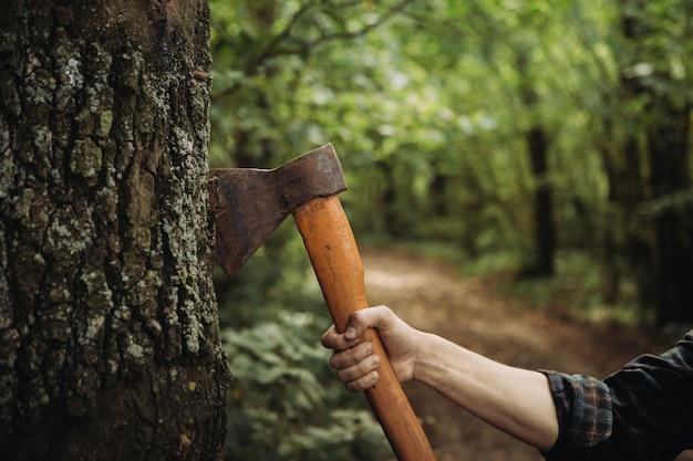 Lenhador segurando um machado no bosque close-up
