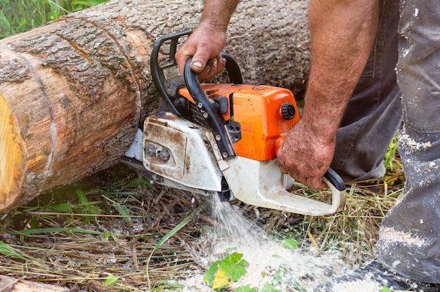 Lenhador serra uma árvore com uma serra elétrica em uma serraria.