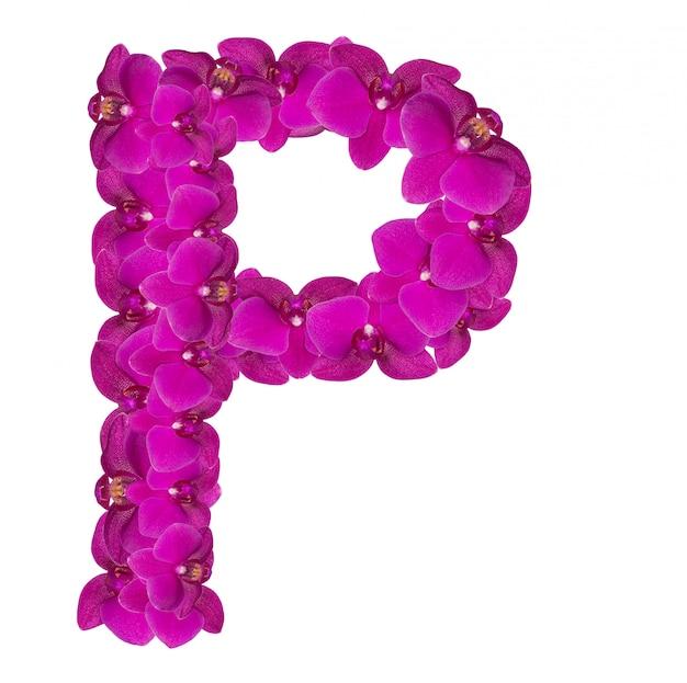 Letra p feita de pétalas de flores rosa