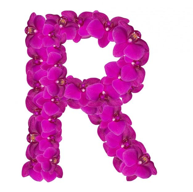 Letra r feita de pétalas de flores rosa