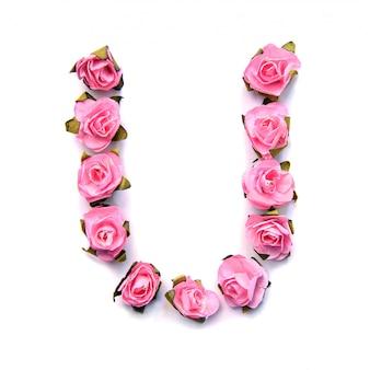 Letra u do alfabeto inglês de rosas na superfície branca