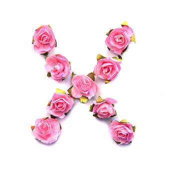 Letra x do alfabeto inglês de rosas na superfície branca