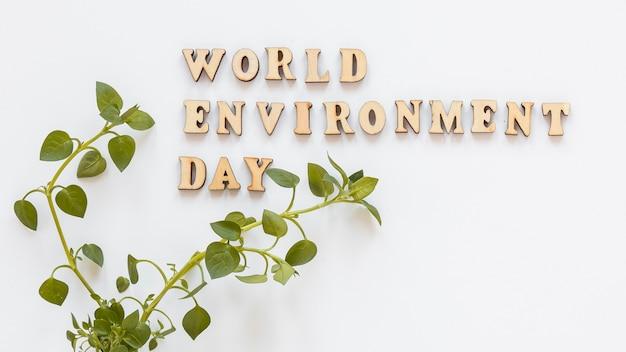 Letras de madeira do mundo ambiente dia