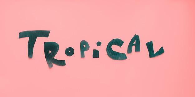 Letras tropicais palavra de folhas tropicais verdes