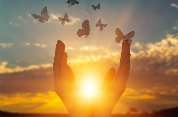Levantando as mãos humanas e borboletas no fundo do sol