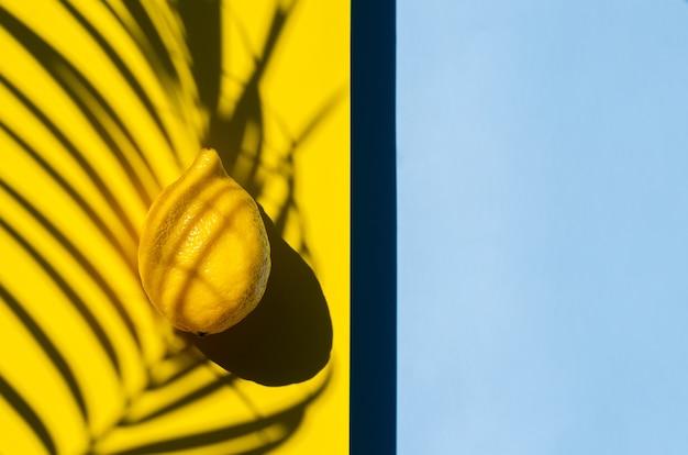 Limão em fundo amarelo com sombra de folhas de coco e espaço azul para texto