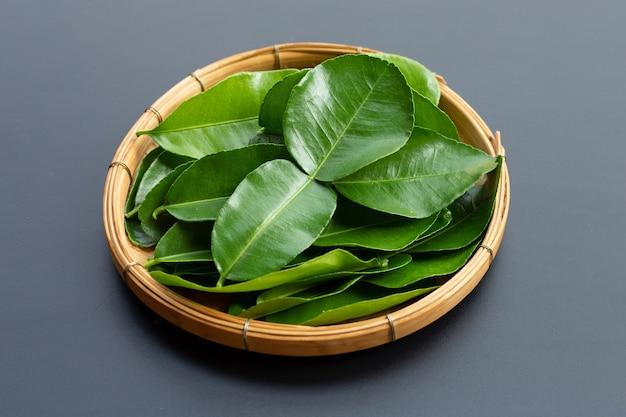 Limão kaffir bergamota deixa o ingrediente fresco da erva em fundo escuro.