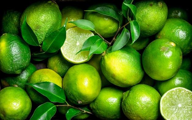 Limão maduro suculento com folhagem. vista do topo