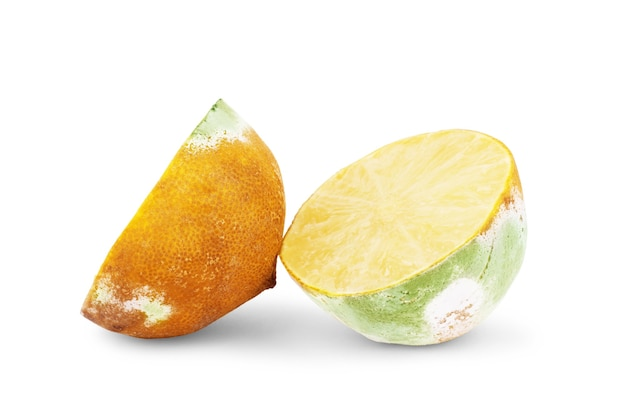 Limão podre em um fundo branco