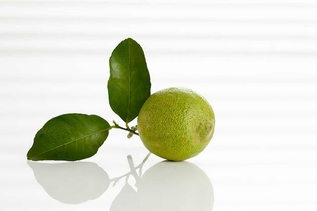 Limão verde em fundo branco, close-up