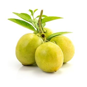 Limões com folhas isoladas no fundo branco
