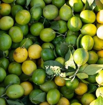 Limões como plano de fundo e textura