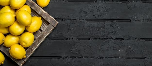Limões frescos na bandeja. sobre fundo preto rústico