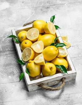 Limões maduros e suculentos com folhas na bandeja. na superfície rústica branca