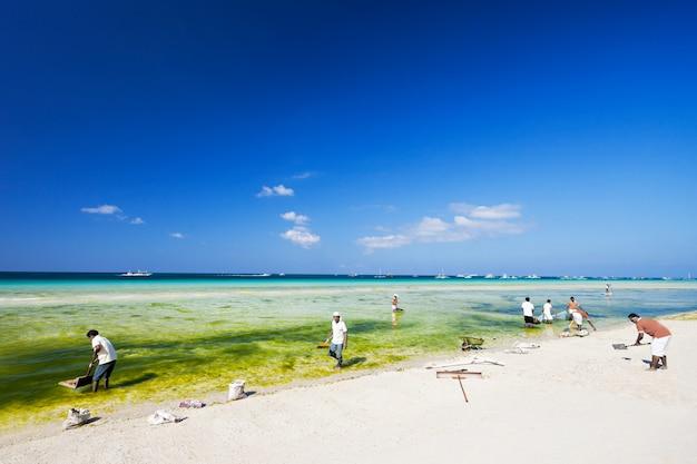 Limpando a praia