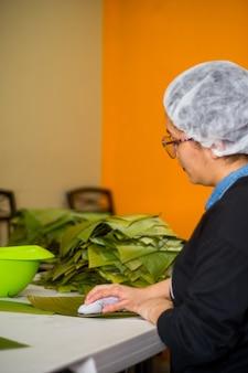Limpando folhas de bananeira para fazer tamales