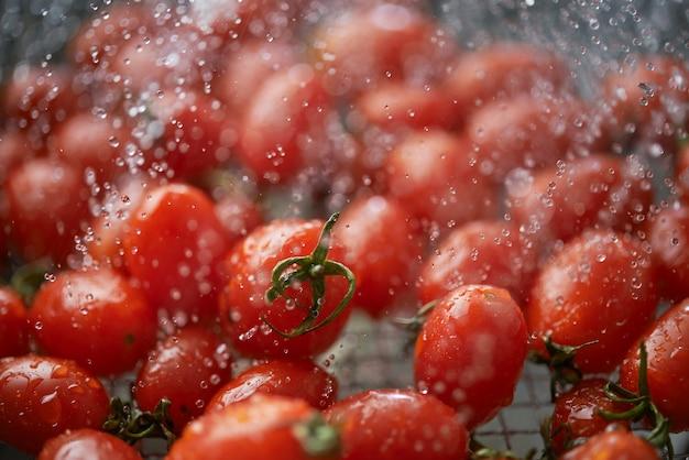 Limpar os tomates maduros vermelhos vívidos na cesta de arame